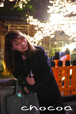 2017年の花見は京都へ~