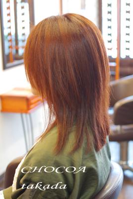 秋 色 オレンジ ボルドー カラー 季節 寒色系 暖色系